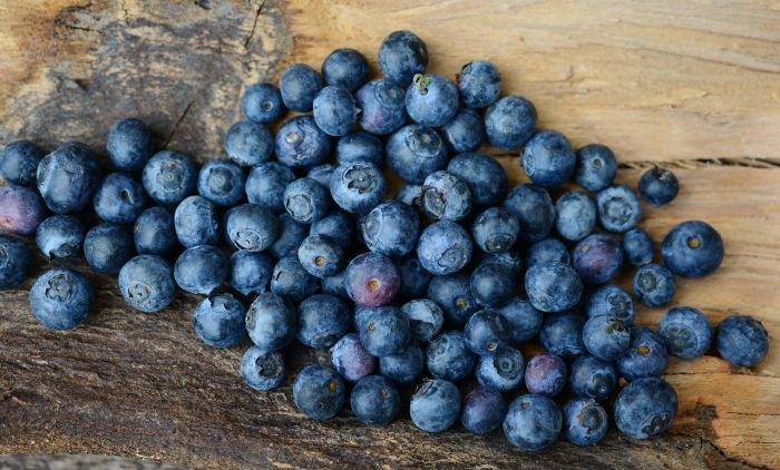1598343560_blueberries-2270379_1280.jpg