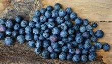 1596539515_blueberries-2270379_1280.jpg